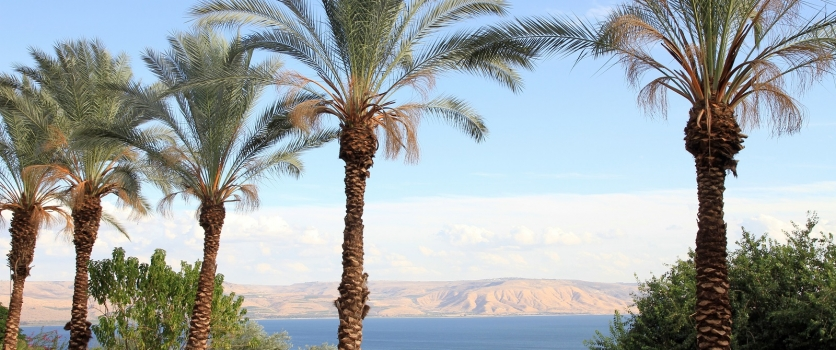 Meditations for Your Trip to Israel